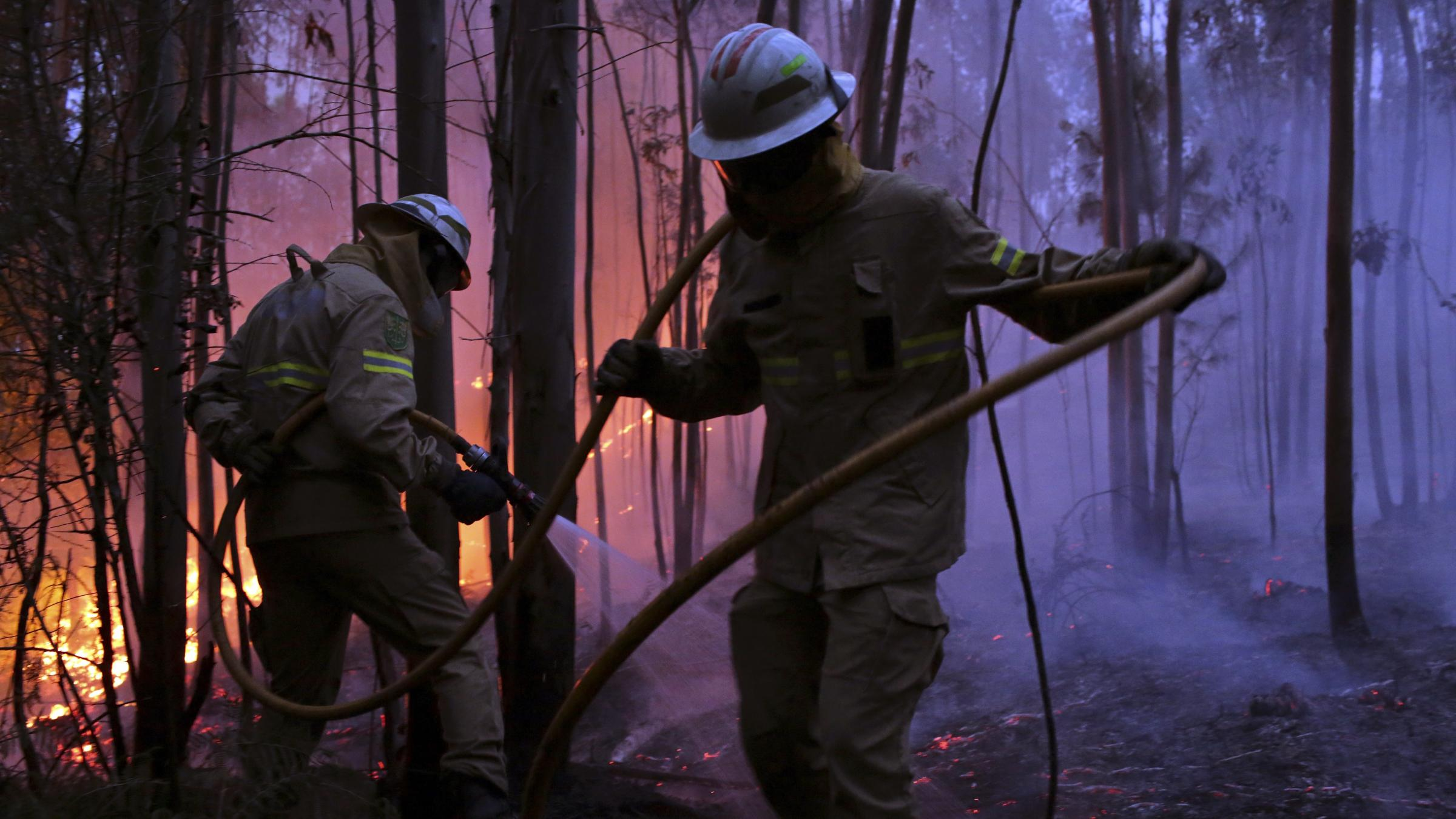 43 dead in central Portugal forest fires""